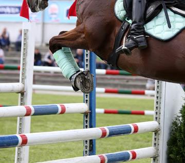 store-equestrian