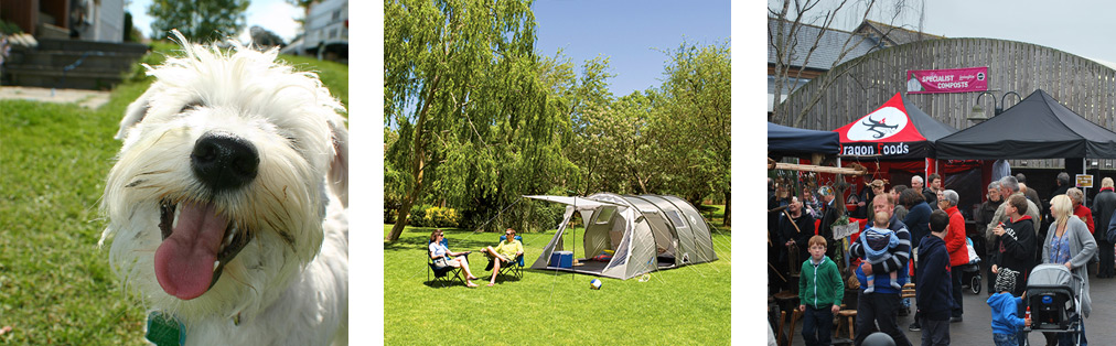 whatson-camping